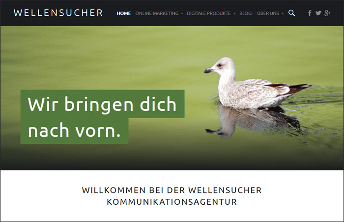 Homepage wellensucher.de